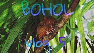 BOHOL [Chocolate Hills, Tarsier, Pyton, Loboc Adventure Park]