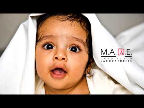 MAZE Cord Blood Services