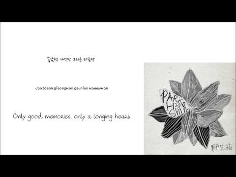 Park Hyo Shin-Wild flower [야생화] (Han/Rom/Eng lyrics)