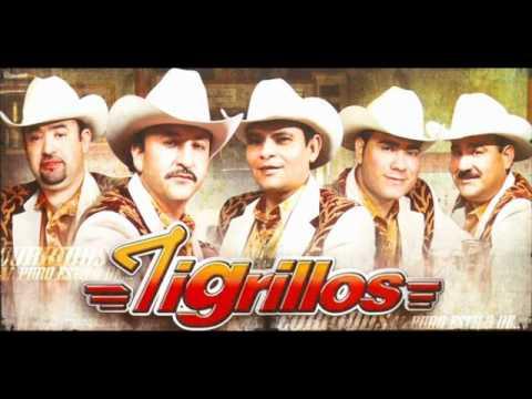 Los Tigrillos No, No, No