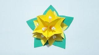 Diy how to make easy paper flowers youtube musicbaby diy how to make easy paper flowers youtube mightylinksfo