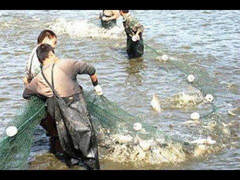 лучшие китайские рыболовные сети