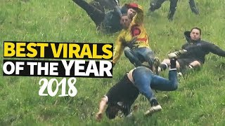 Top 40 Viral Videos of the Year 2018