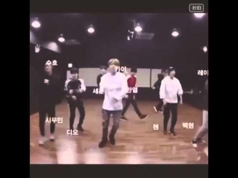 [LEAK] EXO Love Me Right Dance Practice