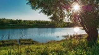 Morning in the Village - The Best Nature 3D Sound Therapy - Full Relaxing Melodies of Nature HD