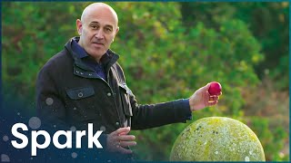 The Fascinating Truth About Gravity | Jim Al-Khalili: Gravity and Me | Spark
