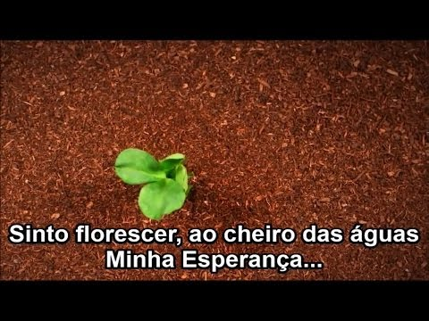 Baixar Esperança - Aline Barros (Playback e Legendado)