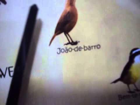 Baixar 6658 - RELÓGIO CANTO DE PÁSSAROS BRASILEIROS HERWEG