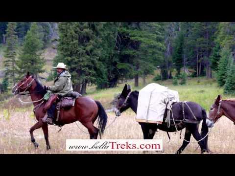 Bella Treks In Montana