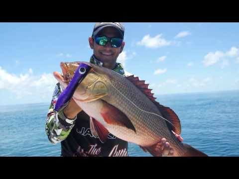 Hinchinbrook GT fishing