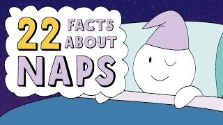22 Facts About Naps