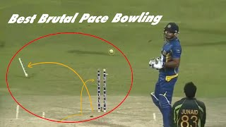 ►Best Brutal Pace Bowling in Cricket History ► Stumps Flying in air ► HD