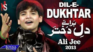 Ali Jee   Dil e Dukhtar   2013   علی جی شگفت انگیز بچه پاکستان