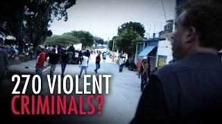 Homeland Security reports 270 violent criminals among migrants | David Menzies