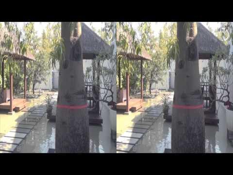 [3DHV]尼歐立體(景觀藝樹)