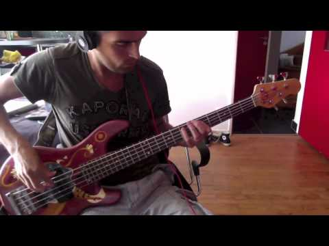 Red Hot Chili Peppers - Funky Monks - Bass Cover