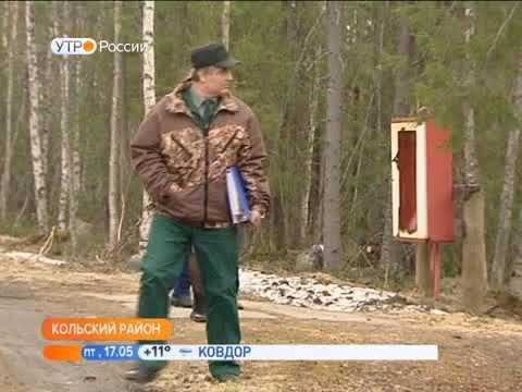 В Кольском Заполярье природоохранная прокуратура начала проверки дачных товариществ, расположенных в лесном фонде