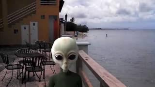 Cận cảnh UFO và người ngoài hành tinh xuất hiện tại nước anh sáng ngày 29 tận thế | NEWS HOT
