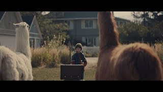 "Llamas and a Little Boy star in ""The Performance"" - A holiday short film from Cost Plus World Market"