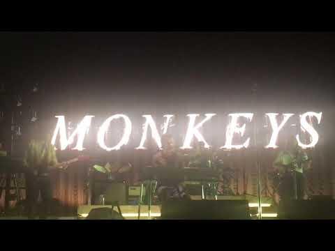 The Ultracheese - Arctic Monkeys Nashville 2018