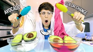 i tested SCIENCE EXPERIMENTS using food items 2