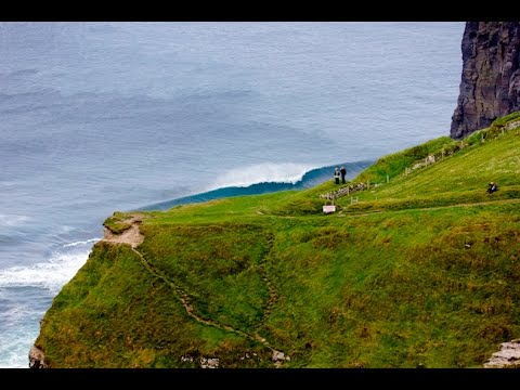 Local Style - Surf Ireland