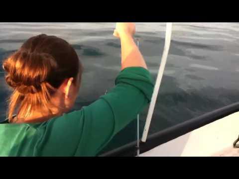 Рыбалка в Орджоникидзе