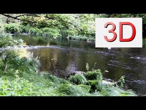 3D Video: River & Forest Relaxation #7