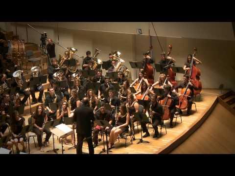 """Jove Banda Simfònica de la FSMCV """"Los Barbas"""" de Ferrer Ferran"""