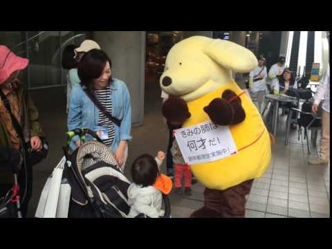 Banana Dog Goes To Lung Walk 2015