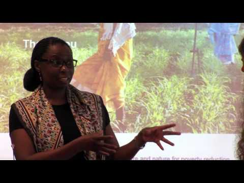 Panel discussion - June 14 2016 - CGIAR programme on Water, Land and Ecosystems (WLE) and UNESCO-IHE