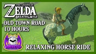 """""""Old Town Road"""" With Relaxing Zelda Background for 10 Hours 