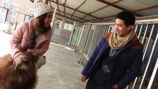 รายการ Pet Lover by Jerhigh : ตอน Go Inter เที่ยวเมืองจีน ตอน1