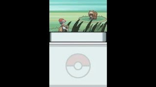 Pokemon Diamond: Effects caused by glitch moves