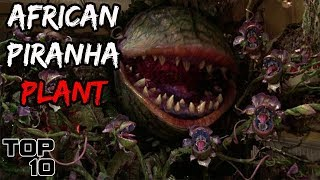 Top 10 Scary Plants That Actually Exist - Part 2