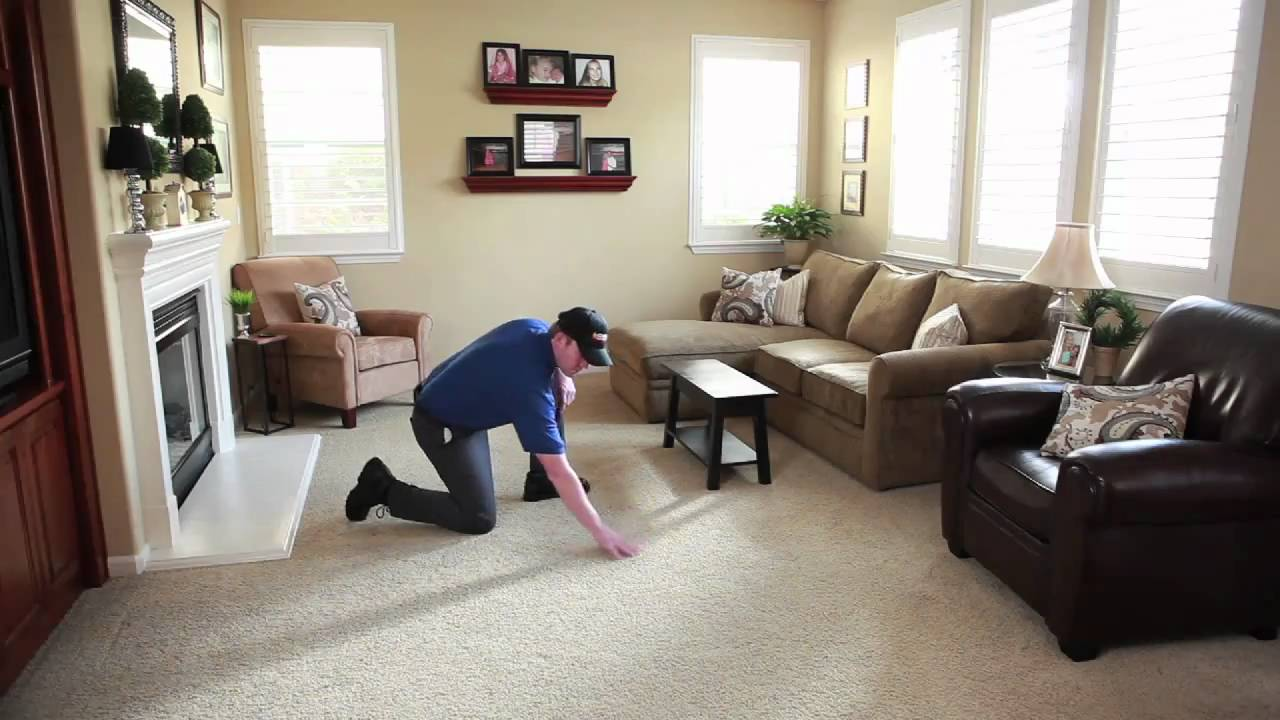 Cleaning Coit Carpet Cleaning