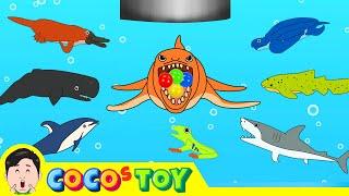 우리집 세면대 밑에 고래가 산다 5, 어린이 동물 만화, 고래의 모험ㅣ꼬꼬스토이