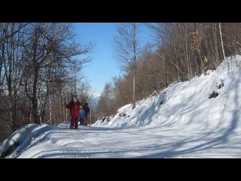 Escursione ciaspole e pelli di foca