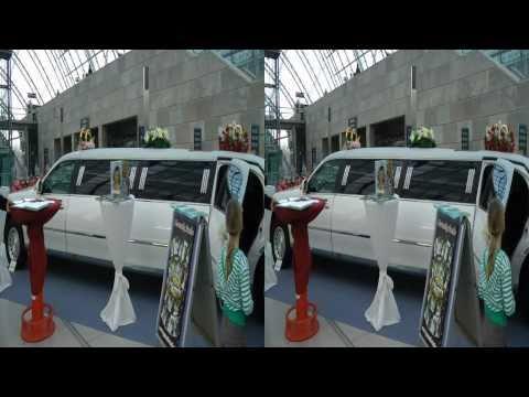Hochzeitsmesse Leipzig 2011 (Wedding Fair) Tour1- Impressionen by www.3dhochzeitsvideo.de