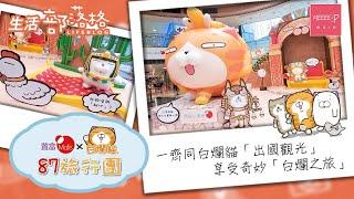 置富Malls X 白爛貓87旅行團 | 一齊同白爛貓「出國觀光」 享受奇妙「白爛之旅」