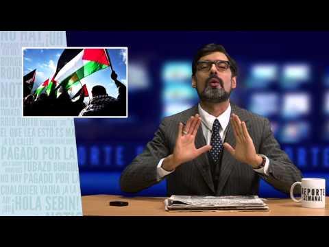 Reporte Semanal - Reconstrucción de Palestina por Maduro