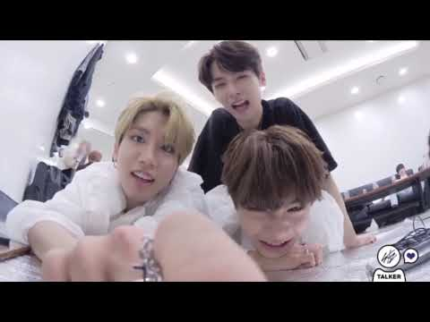 stray kids acting like their zodiac signs (part 2)