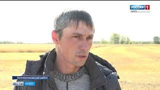 Синоптики прогнозируют дальнейшее ухудшение погоды в Омской области