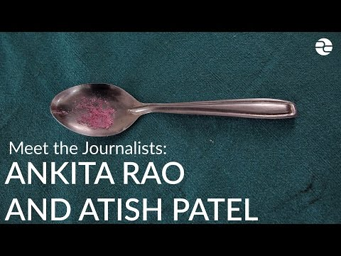 Meet the Journalists: Atish Patel and Ankita Rao