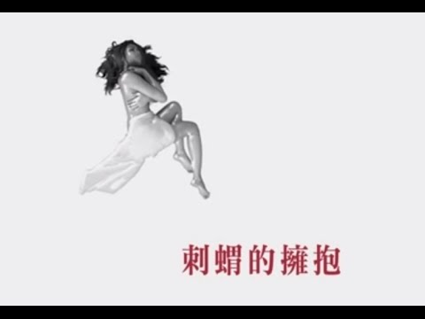 袁詠琳【刺蝟的擁抱 帶刺歌詞版MV】Cindy
