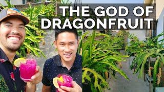 Secret Dragon Fruit Care Tips From a Master Dragon Fruit Grower