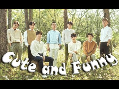 EXO Cute and Funny Moments Part 2