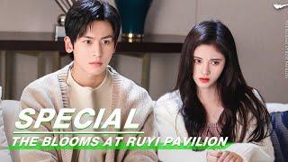 Special: Ju Jingyi Gets Fake Marry With Zhang Zhehan   The Blooms At RUYI Pavilion   如意芳霏   iQIYI