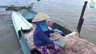 03 | Mùa đẩy ruốc của ngư dân miệt thứ