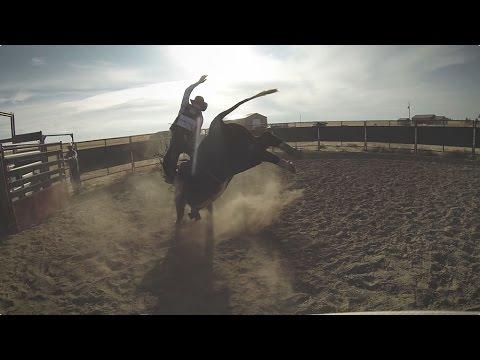"""Honker"" - Magpul CORE Ranch Glove"